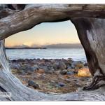 VancouverIsland_MG_6431sm