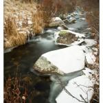 Cracker Creek, Atlin