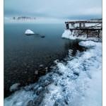 foggy Lakeshore