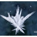 icecrystal_MG_7993sm